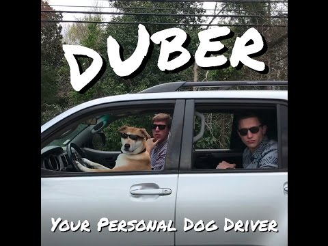 DUber – The Dog Uber