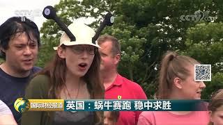 [国际财经报道]英国:蜗牛赛跑 稳中求胜| CCTV财经