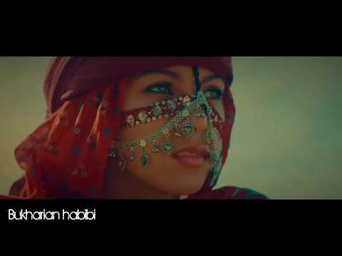 Habibi 🌸Arabian beautiful song | arabic | اغنية عربية