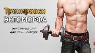 Тренировки эктоморфа: советы по питанию и занятиям в зале