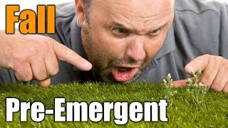 Fall Pre Emergents for Lawns