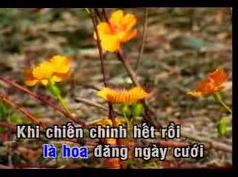 Nhung Dom Mat Hoa Chau