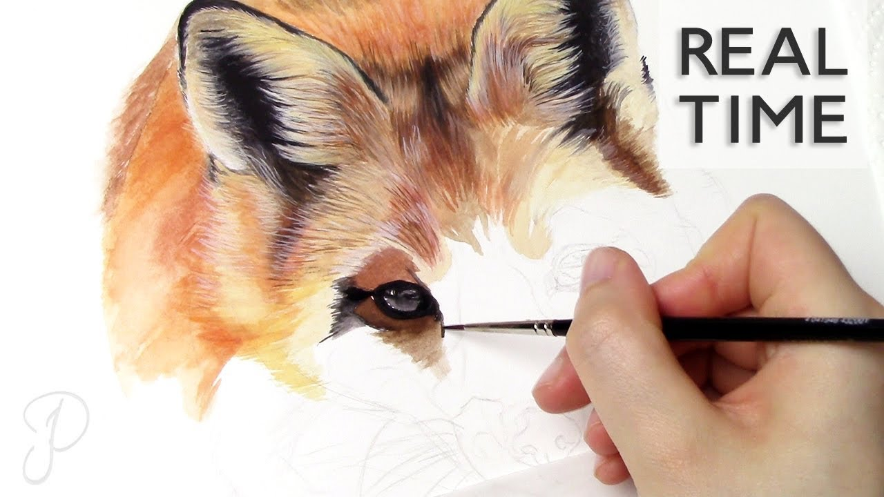 Real Time Preview Red Fox Realistic Animal Watercolor Painting Youtube
