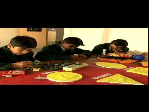 Delhi Public School Promotional Film