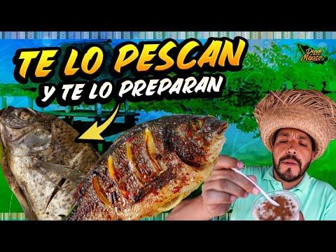 Lo PESCAMOS y nos lo PREPARAN al momento en Puerto Ceiba - El Paraíso, Tabasco