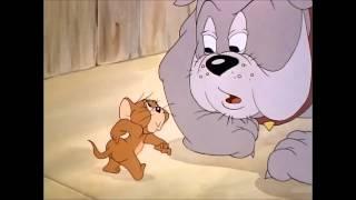 Том и Джерри-Телохранитель (1)
