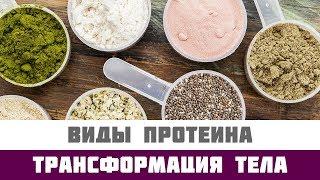 основные виды протеина и их особенности