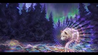 The Psychedelic Experience - Terence Mckenna, Graham Hancock, Jeremy Narby