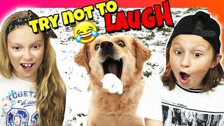 If You LAUGH, You LOSE - TRY NOT TO LAUGH CHALLENGE! (IMPOSSIBLE)