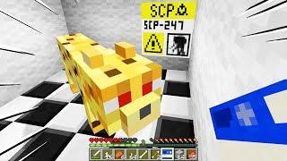 NON ACCAREZZARE QUESTO GATTINO!! - Minecraft SCP 247