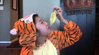 what does the tiger say?   philadelphia zoo unless contest entry 2014