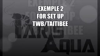 Set Up exemple 2 for twb/taitibee/pinto