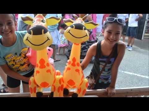 2015 Maywood Street Fair 8 16 15