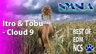 ムッチャ!いけてるBGM&動画にゃんだ~ Itro & Tobu - Cloud 9 Best of EDM NCS【作業用BGM】Nyanda