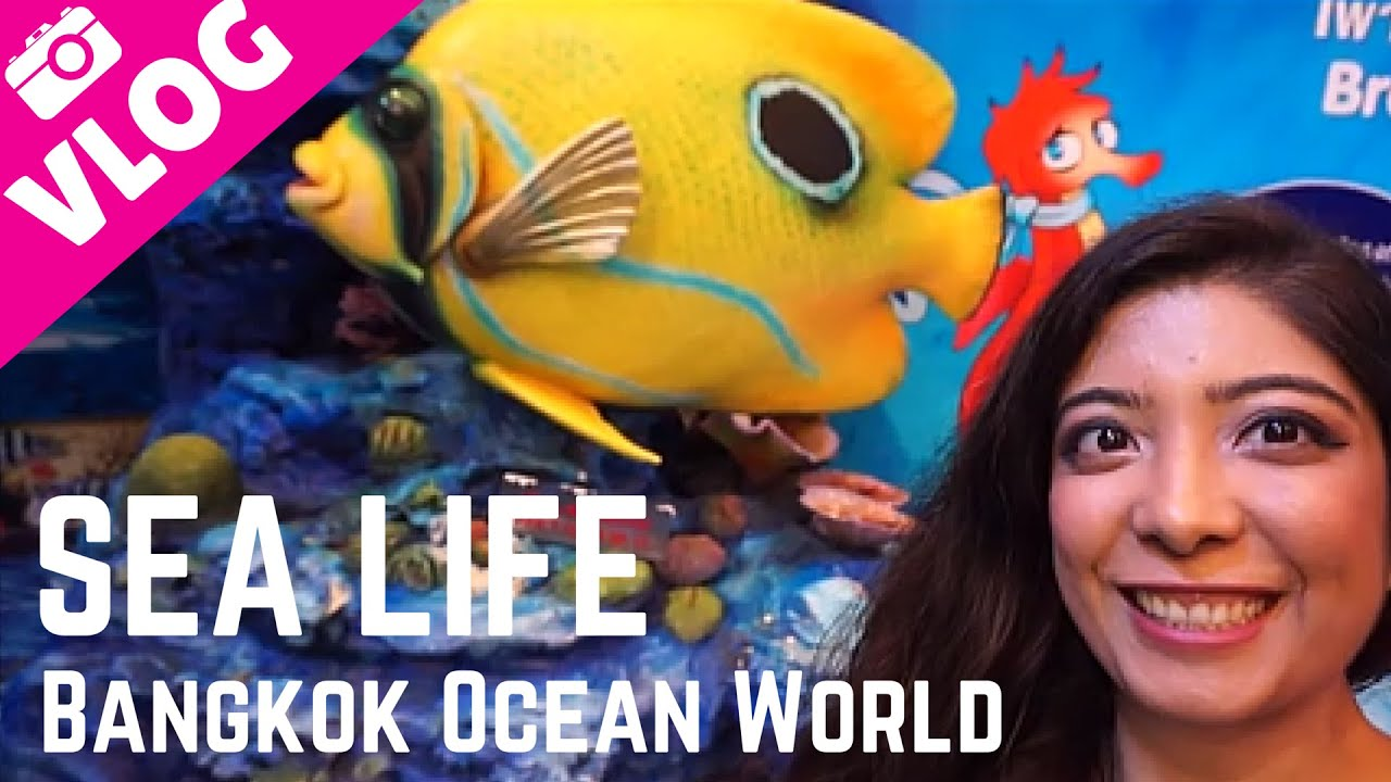 Bangkok Travel Vlog #4 Sea Life Siam Ocean World | Penguins, Jellyfish, Underwater Glass Tunnel