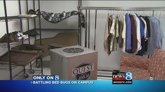 Hope heating chamber kills bed bugs
