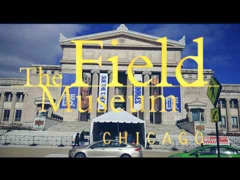 Short Tour Of The Field Museum In Chicago