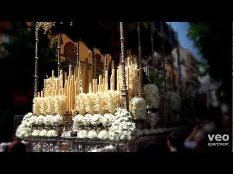 Macarena tour | Neighbourhoods of Seville