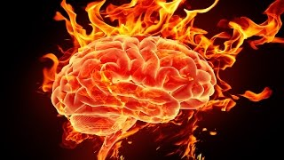 24 Amazing Facts About Your Brain
