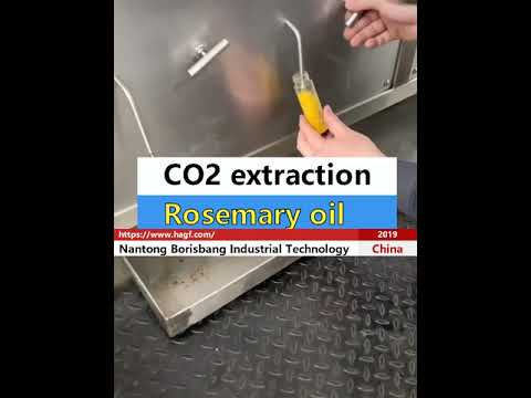 CO2 extraction of rosemary oil