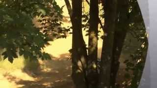 Tobi Mayr 1Millionen Video Motocross Putzmühle