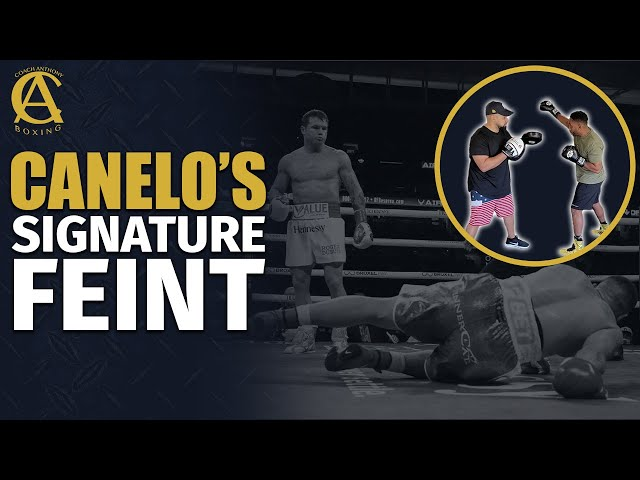 How to do Canelo Alvarez Signature Feint! [ Featuring Dyah Davis ]