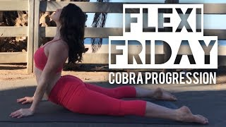 FLEXI FRIDAY | Cobra Progression Flow