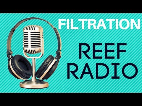 saltwater aquarium filtration | Rotter Tube Reef | Reef Radio