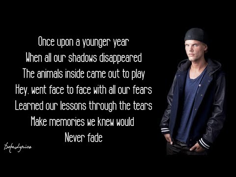 Avicii  The Nights Lyrics