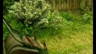 lawnmower Version 1.4, Tutorial