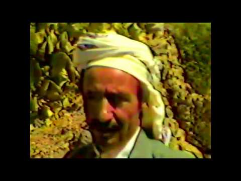 Yemen 1981 | Wedding & Sanaa Int'l School | Dr. Wayne Flaatan copy