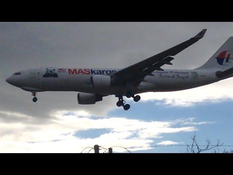 RARE - MASKargo A332 PANDA LIVERY (9M-MUD) At Adelaide Airport