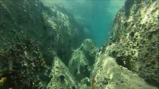 Underwater video Ierissos Halkidiki Greece- GoPro Hero3(Don't forget to watch it on HD! Thank you for watching! Location : Ierissos, Halkidiki, Greece Shot 100% by GoPro Hero3 Silver Edition Music : Emancipator ..., 2013-06-18T15:56:50.000Z)