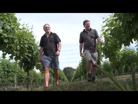 Sileni Estates Winery, Hawke's Bay, New Zealand