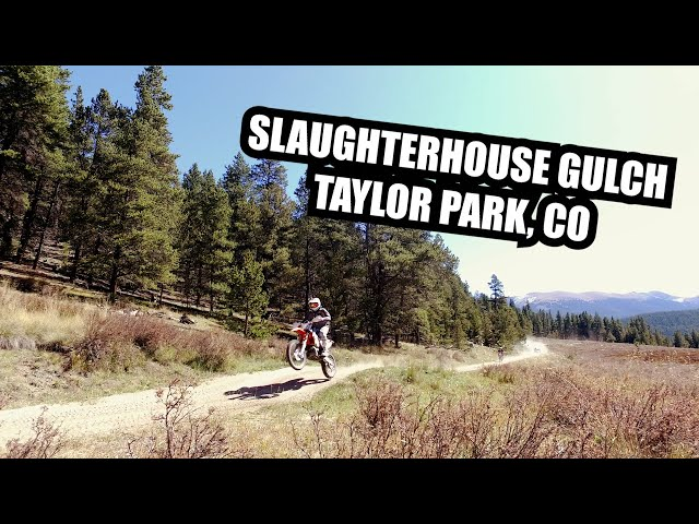 Slaughterhouse Gulch (Pitkin Colorado)