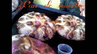 Las Delicias de Santa Ana hueytlalpan