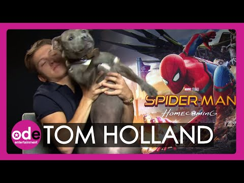 download Spider-Man: Tom Holland brings his dog to our interview