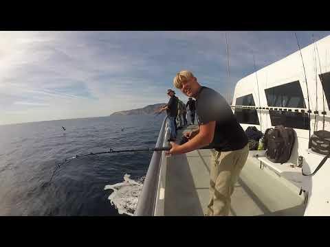 Channel Islands Sport Fishing Speed Twin
