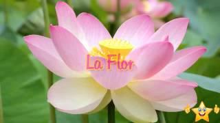 La flor, Reflexiones sobre la familia, Historias para reflexionar