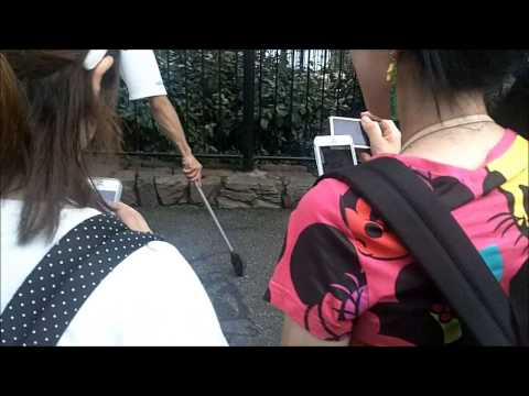 DisneySea Tokyo - Cleaner paints donald duck on the floor using just his sweeper and some water