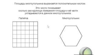 Измерение площади палеткой