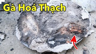 Lâm Vlog - Làm Món Gà Hóa Thạch Trong Đống Muối   Grilled chicken in a pile of salt
