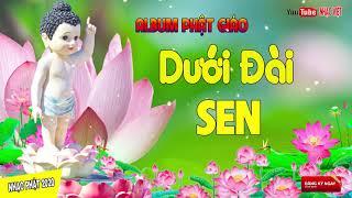 Cả Ngày Mệt Mỏi Nên Nghe Nhạc Này Thư Giãn - Nhạc Phật Giáo Hay Nhất 2020