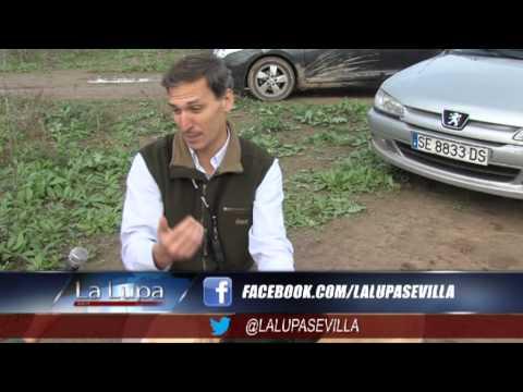 La Lupa Sevilla - 8 de noviembre de 2012 - Especial Caza