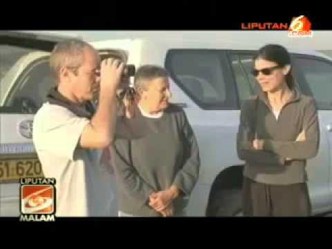Aksi Aerobatik Ratusan Burung Jalak di Langit Israel