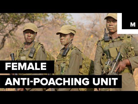 Meet the Female Rangers Protecting Zimbabwe's Elephants