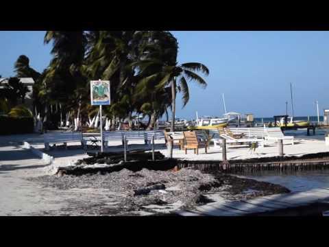 Belize in 1 Week