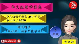 五年级华文     II     朗读课文( 第七课 : 向牵牛花学习 )   II    2021最新KSSR 课程