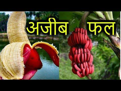 [Hindi] 8 STRANGE FRUITS / दुनिया की 8 अजीब फल