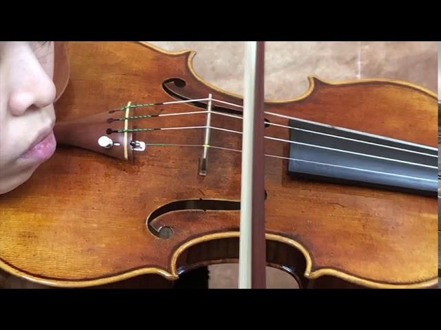 Ifstrings Master Build deluxe Wood #347 Guarneri del Gesu 1743